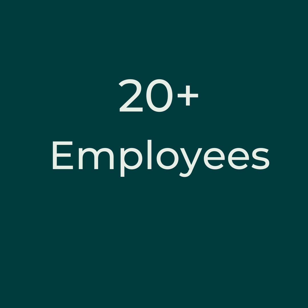 20+ employees